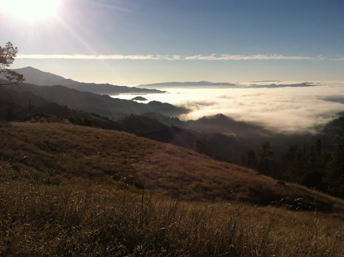 Mayacamas Mountain Sanctuary
